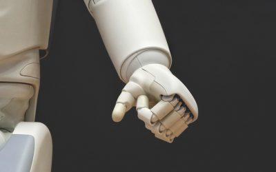 Die Herausforderungen von Social Robots